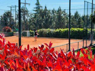 𝘍𝘪𝘯𝘥 𝘣𝘢𝘭𝘢𝘯𝘤𝘦 𝘪𝘯 𝘭𝘪𝘧𝘦 ⚖️ #lesraquettestennisacademy #tennis #tenniscourt #tennislife #findbalance #findyourself #tennisworld #nature #beautifultenniscourts #skg #greece #thessaloniki #tennistime #life